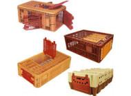 Cages volailles vivantes
